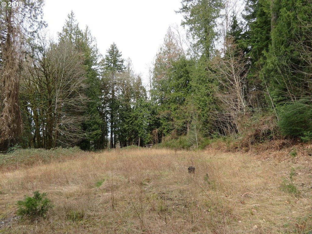191 E Graham RD Belfair, WA 98528 - MLS #: 18042369